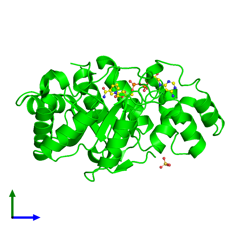 <div class='caption-body'><ul class ='image_legend_ul'> Monomeric assembly 1 of PDB entry 1m9h coloured by chemically distinct molecules and viewed from the side. This assembly contains:<li class ='image_legend_li'>One copy of 2,5-diketo-D-gluconic acid reductase A</li><li class ='image_legend_li'>One copy of SULFATE ION</li><li class ='image_legend_li'>One copy of NICOTINAMIDE-ADENINE-DINUCLEOTIDE</li></ul></div>