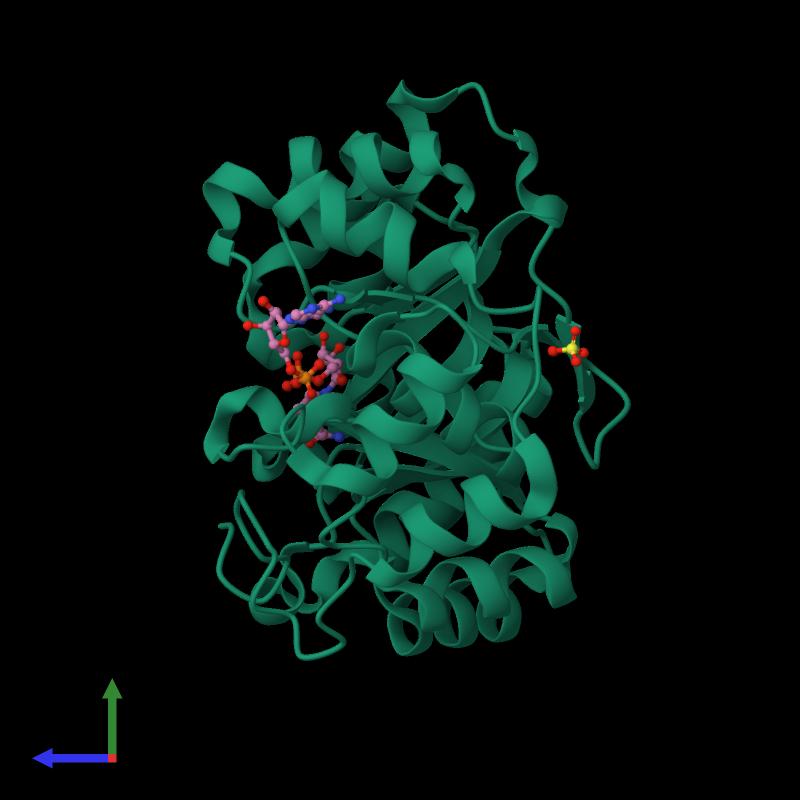 <div class='caption-body'><ul class ='image_legend_ul'>The deposited structure of PDB entry 1m9h coloured by chemically distinct molecules and viewed from the side. The entry contains: <li class ='image_legend_li'>1 copy of 2,5-diketo-D-gluconic acid reductase A</li><li class ='image_legend_li'>2 non-polymeric entities<ul class ='image_legend_ul'><li class ='image_legend_li'>1 copy of SULFATE ION</li><li class ='image_legend_li'>1 copy of NICOTINAMIDE-ADENINE-DINUCLEOTIDE</li></ul></li></div>