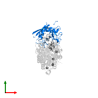 PDB 1mf8 contains 1 copy of Peptidyl-prolyl cis-trans isomerase A in assembly 1. This protein is highlighted and viewed from the top.