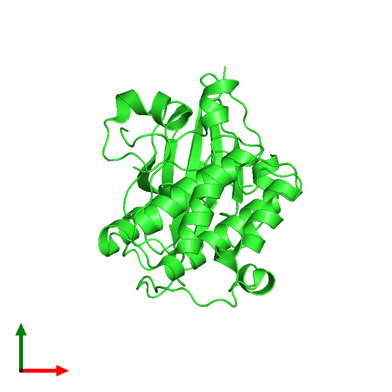 <div class='caption-body'><ul class ='image_legend_ul'>The deposited structure of PDB entry 1mry coloured by chain and viewed from the top. The entry contains: <li class ='image_legend_li'>1 copy of RAC-beta serine/threonine-protein kinase</li><li class ='image_legend_li'>There are no non-polymeric molecules</li></ul></li></ul></li></div>