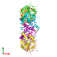 PDB 1n0e coloured by chain and viewed from the top.