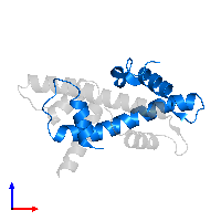 PDB 1n1j contains 1 copy of NF-YC in assembly 1. This protein is highlighted and viewed from the front.