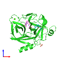 PDB 1nes coloured by chain and viewed from the front.