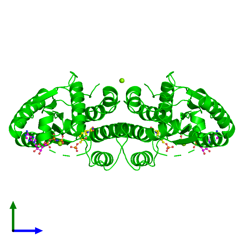 <div class='caption-body'><ul class ='image_legend_ul'> Dimeric assembly 1 of PDB entry 1nn5 coloured by chemically distinct molecules and viewed from the side. This assembly contains:<li class ='image_legend_li'>2 copies of Thymidylate kinase</li><li class ='image_legend_li'>4 copies of MAGNESIUM ION</li><li class ='image_legend_li'>2 copies of 3'-DEOXYTHYMIDINE-5'-MONOPHOSPHATE</li><li class ='image_legend_li'>2 copies of PHOSPHOAMINOPHOSPHONIC ACID-ADENYLATE ESTER</li></ul></div>