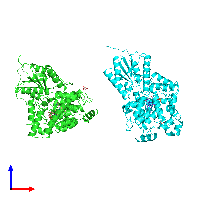 PDB 1np7 coloured by chain and viewed from the front.