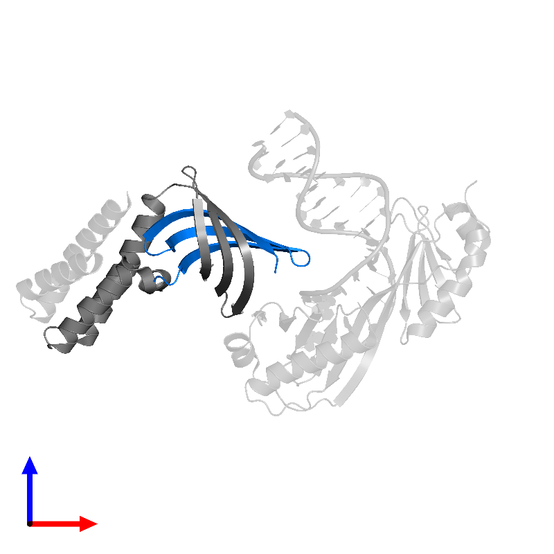 <div class='caption-body'>PDB entry 1nvp contains 1 copy of Transcription initiation factor IIA beta chain in assembly 1. This protein is highlighted and viewed from the front.</div>