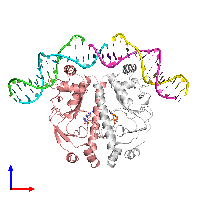 PDB 1o3t coloured by chain and viewed from the front.
