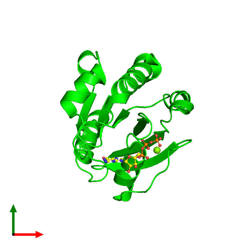 <div class='caption-body'><ul class ='image_legend_ul'> Monomeric assembly 1 of PDB entry 1o3y coloured by chemically distinct molecules and viewed from the top. This assembly contains:<li class ='image_legend_li'>One copy of ADP-ribosylation factor 1</li><li class ='image_legend_li'>One copy of MAGNESIUM ION</li><li class ='image_legend_li'>One copy of GUANOSINE-5'-TRIPHOSPHATE</li></ul></div>