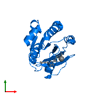 PDB 1o3y contains 1 copy of ADP-ribosylation factor 1 in assembly 1. This protein is highlighted and viewed from the top.