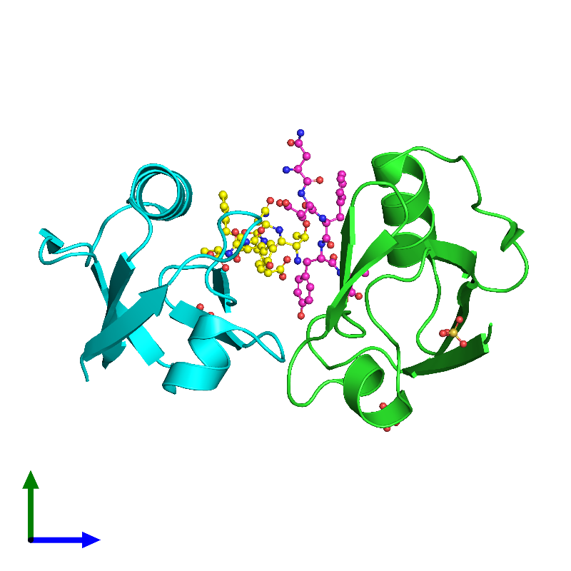 <div class='caption-body'><ul class ='image_legend_ul'>The deposited structure of PDB entry 1oby coloured by chain and viewed from the side. The entry contains: <li class ='image_legend_li'>2 copies of Syntenin-1</li><li class ='image_legend_li'>2 copies of Syndecan-4</li><li class ='image_legend_li'>There is 1 non-polymeric molecule<ul class ='image_legend_ul'><li class ='image_legend_li'>3 copies of SULFATE ION</li></ul></li></div>
