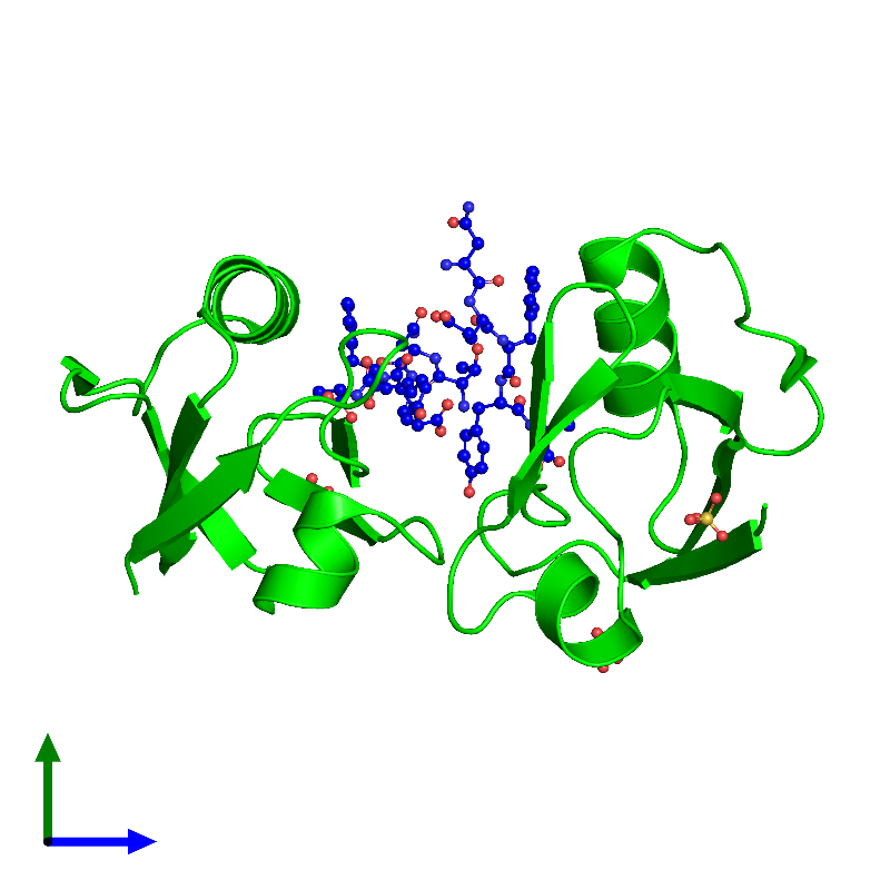 <div class='caption-body'><ul class ='image_legend_ul'>The deposited structure of PDB entry 1oby coloured by chemically distinct molecules and viewed from the side. The entry contains: <li class ='image_legend_li'>2 copies of Syntenin-1</li><li class ='image_legend_li'>2 copies of Syndecan-4</li><li class ='image_legend_li'>There is 1 non-polymeric molecule<ul class ='image_legend_ul'><li class ='image_legend_li'>3 copies of SULFATE ION</li></ul></li></div>