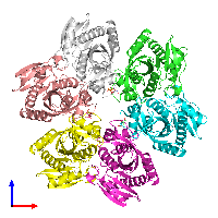 PDB 1odk coloured by chain and viewed from the front.