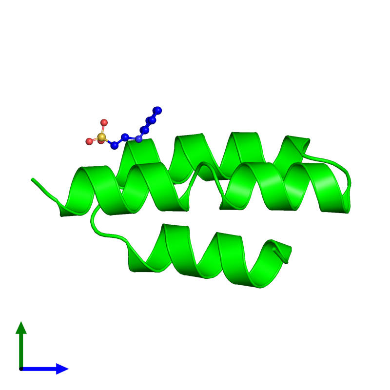<div class='caption-body'><ul class ='image_legend_ul'> Monomeric assembly 1 of PDB entry 1oks coloured by chemically distinct molecules and viewed from the side. This assembly contains:<li class ='image_legend_li'>One copy of Phosphoprotein</li><li class ='image_legend_li'>One copy of 2-[N-CYCLOHEXYLAMINO]ETHANE SULFONIC ACID</li></ul></div>
