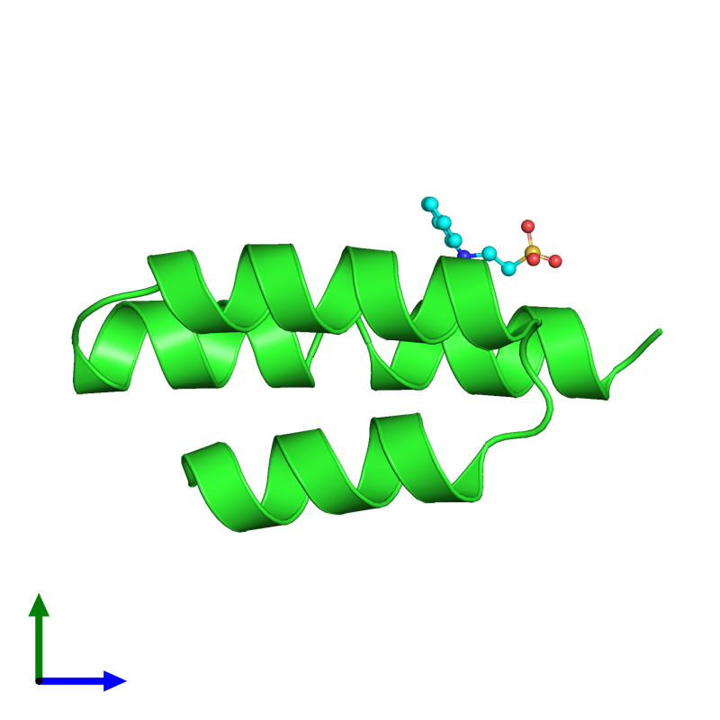 <div class='caption-body'><ul class ='image_legend_ul'>The deposited structure of PDB entry 1oks coloured by chain and viewed from the side. The entry contains: <li class ='image_legend_li'>1 copy of Phosphoprotein</li><li class ='image_legend_li'>There is 1 non-polymeric molecule<ul class ='image_legend_ul'><li class ='image_legend_li'>1 copy of 2-[N-CYCLOHEXYLAMINO]ETHANE SULFONIC ACID</li></ul></li></div>