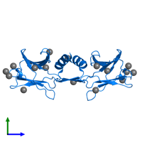 PDB 1osy contains 2 copies of Immunomodulatory protein FIP-Fve in assembly 1. This protein is highlighted and viewed from the side.