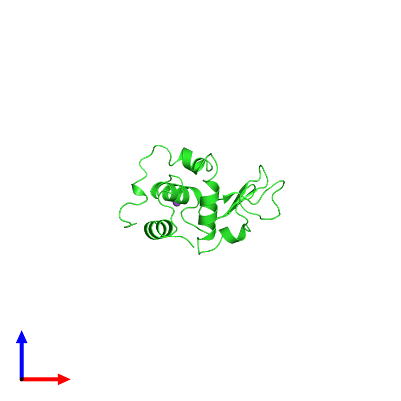<div class='caption-body'><ul class ='image_legend_ul'>The deposited structure of PDB entry 1ouf coloured by chain and viewed from the front. The entry contains: <li class ='image_legend_li'>1 copy of Lysozyme C</li><li class ='image_legend_li'>There is 1 non-polymeric molecule<ul class ='image_legend_ul'><li class ='image_legend_li'>1 copy of SODIUM ION</li></ul></li></div>