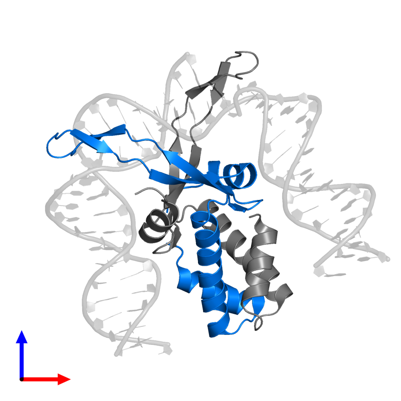 <div class='caption-body'>PDB entry 1owf contains 1 copy of Integration host factor subunit alpha in assembly 1. This protein is highlighted and viewed from the front.</div>