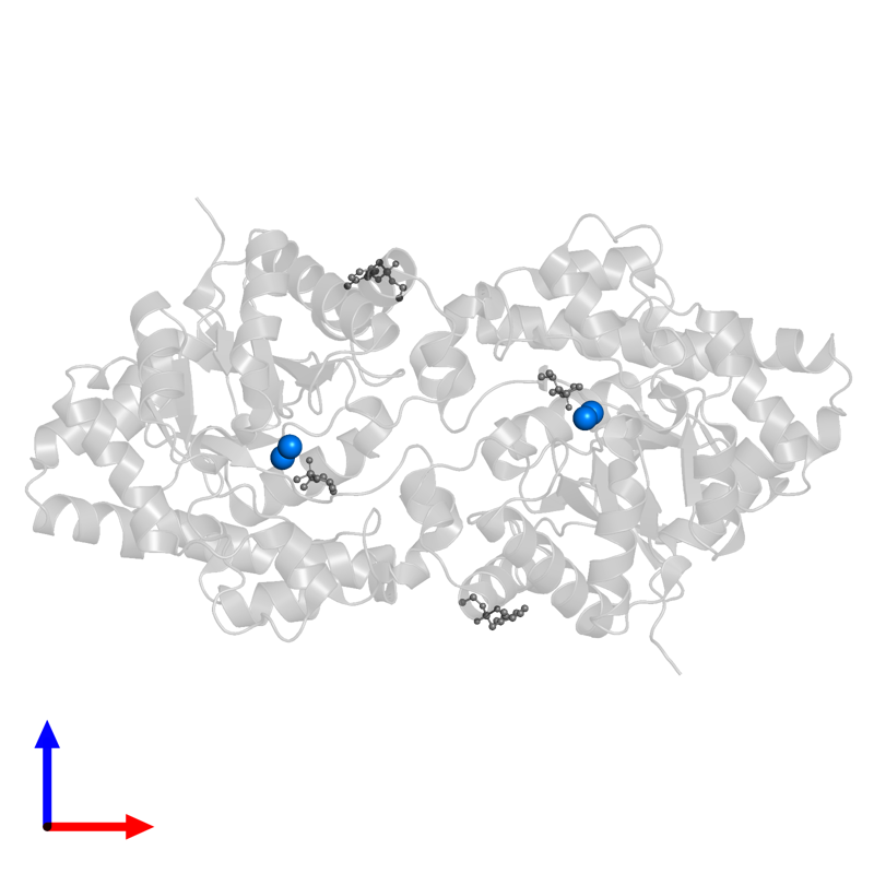 <div class='caption-body'>PDB entry 1p6c contains 4 copies of ZINC ION in assembly 1. This small molecule is highlighted and viewed from the front.</div>
