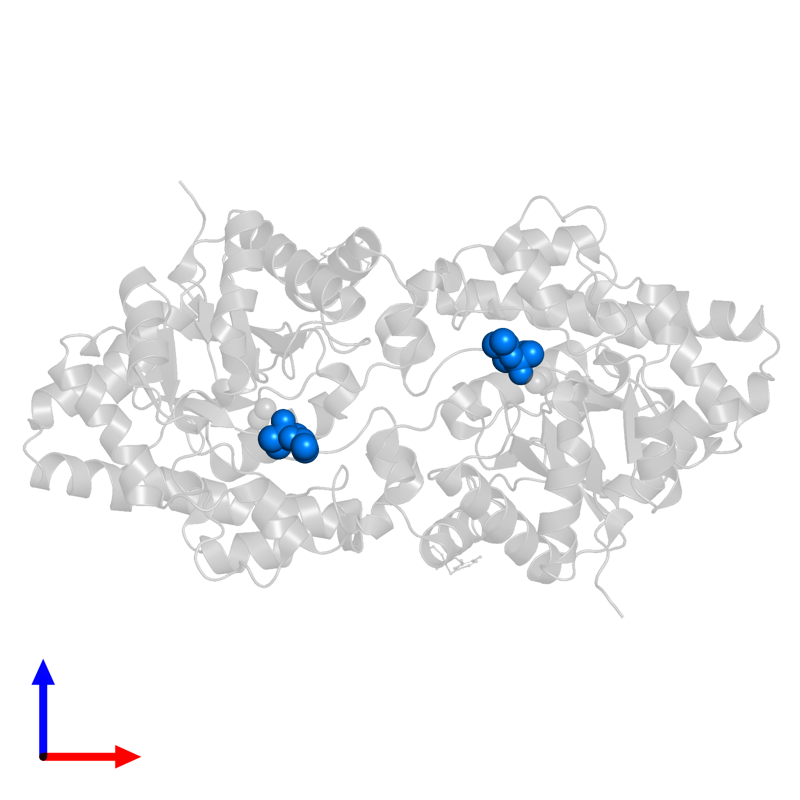 <div class='caption-body'>PDB entry 1p6c contains 2 copies of METHYLPHOSPHONIC ACID DIISOPROPYL ESTER in assembly 1. This small molecule is highlighted and viewed from the front.</div>