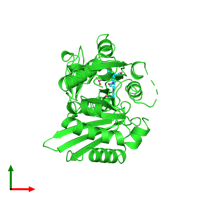 PDB 1pda coloured by chain and viewed from the top.