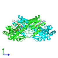 PDB 1pfk coloured by chain and viewed from the side.