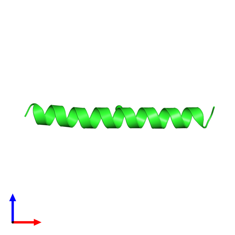 <div class='caption-body'><ul class ='image_legend_ul'>The deposited structure of PDB entry 1piq coloured by chain and viewed from the front. The entry contains: <li class ='image_legend_li'>1 copy of General control transcription factor GCN4</li><li class ='image_legend_li'>There is 1 non-polymeric molecule<ul class ='image_legend_ul'><li class ='image_legend_li'>1 copy of CHLORIDE ION</li></ul></li></div>