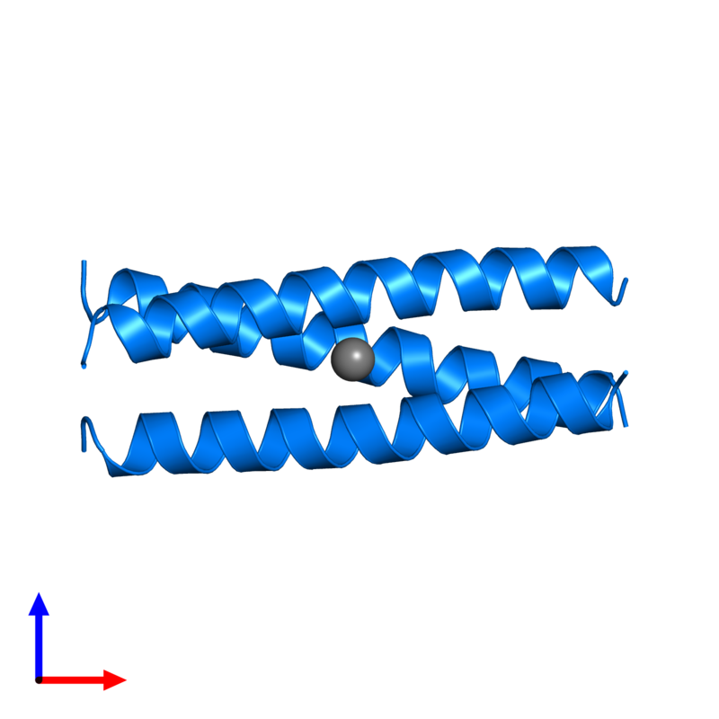 <div class='caption-body'>PDB entry 1piq contains 3 copies of General control transcription factor GCN4 in assembly 1. This protein is highlighted and viewed from the front.</div>