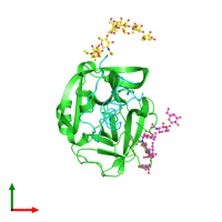 PDB 1ppf coloured by chain and viewed from the top.