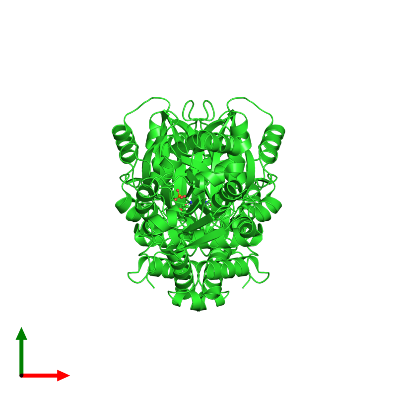 <div class='caption-body'><ul class ='image_legend_ul'> Dimeric assembly 1 of PDB entry 1pqp coloured by chain and viewed from the top. This assembly contains:<li class ='image_legend_li'>2 copies of Aspartate-semialdehyde dehydrogenase</li><li class ='image_legend_li'>2 copies of PHOSPHATE ION</li><li class ='image_legend_li'>2 copies of L-HOMOSERINE</li></ul></div>