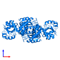 PDB 1pqp contains 2 copies of Aspartate-semialdehyde dehydrogenase in assembly 1. This protein is highlighted and viewed from the side.