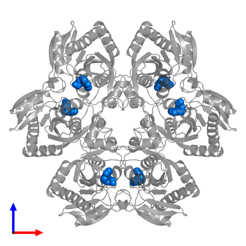 <div class='caption-body'>PDB entry 1pr0 contains 6 copies of INOSINE in assembly 1. This small molecule is highlighted and viewed from the front.</div>