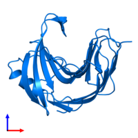 PDB 1pvx contains 1 copy of Endo-1,4-beta-xylanase in assembly 1. This protein is highlighted and viewed from the front.