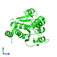 PDB 1q2u coloured by chain and viewed from the front.