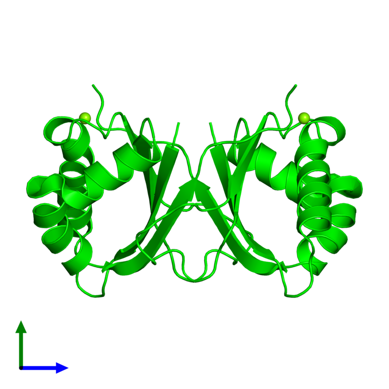 <div class='caption-body'><ul class ='image_legend_ul'> Dimeric assembly 1 of PDB entry 1q4r coloured by chemically distinct molecules and viewed from the side. This assembly contains:<li class ='image_legend_li'>2 copies of Stress-response A/B barrel domain-containing protein HS1</li><li class ='image_legend_li'>2 copies of MAGNESIUM ION</li></ul></div>