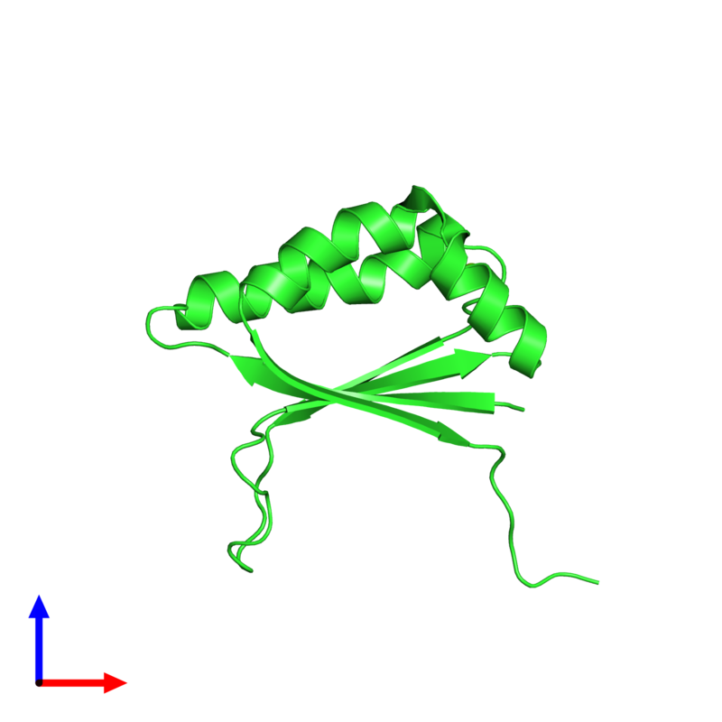 <div class='caption-body'><ul class ='image_legend_ul'>The deposited structure of PDB entry 1q4r coloured by chain and viewed from the front. The entry contains: <li class ='image_legend_li'>1 copy of Stress-response A/B barrel domain-containing protein HS1</li><li class ='image_legend_li'>There is 1 non-polymeric molecule<ul class ='image_legend_ul'><li class ='image_legend_li'>1 copy of MAGNESIUM ION</li></ul></li></div>