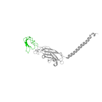 1 copy of SCOP domain 51256 (Cytochrome f, small domain) in Cytochrome f in PDB 1q90.