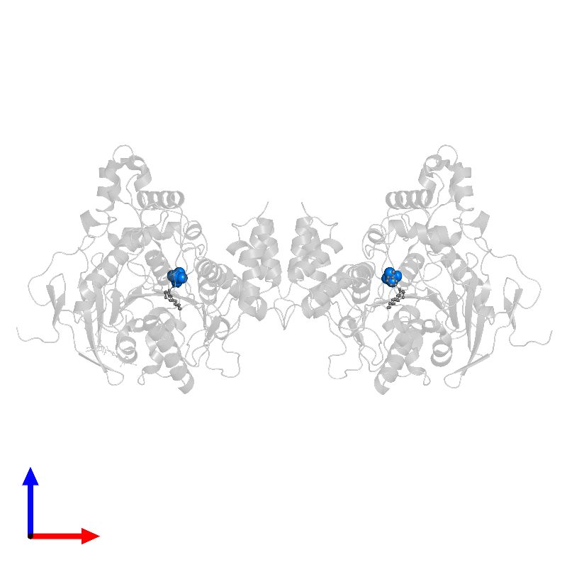 <div class='caption-body'>PDB entry 1qon contains 2 copies of SULFATE ION in assembly 1. This small molecule is highlighted and viewed from the front.</div>