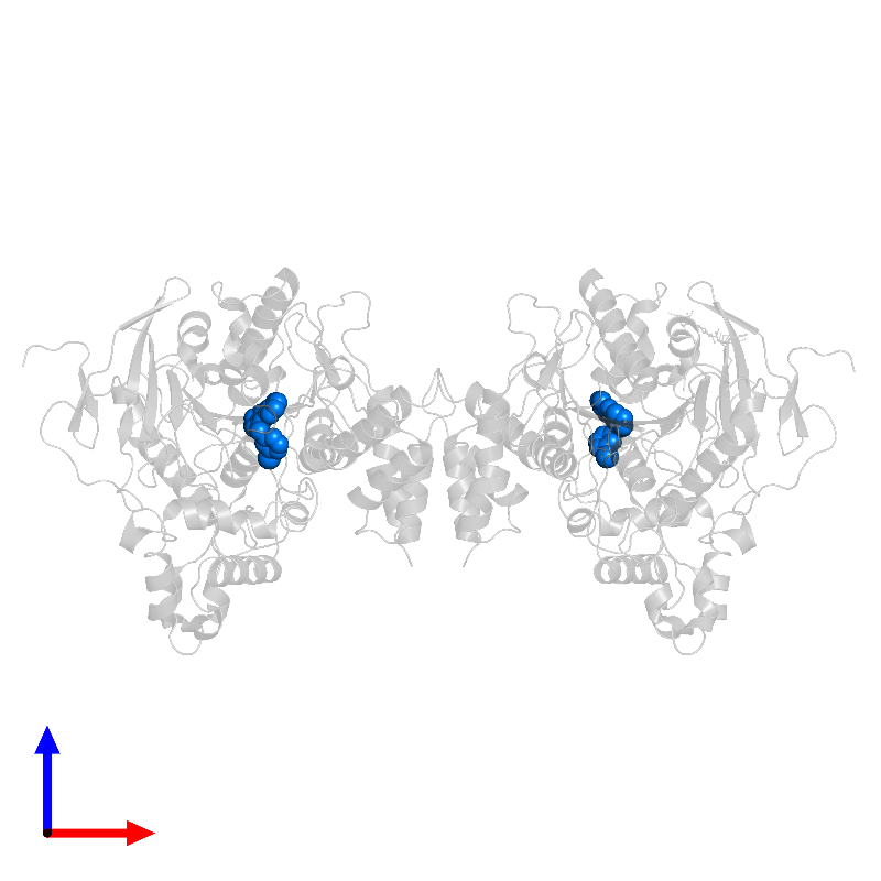 <div class='caption-body'>PDB entry 1qon contains 2 copies of 9-(3-IODOBENZYLAMINO)-1,2,3,4-TETRAHYDROACRIDINE in assembly 1. This small molecule is highlighted and viewed from the front.</div>