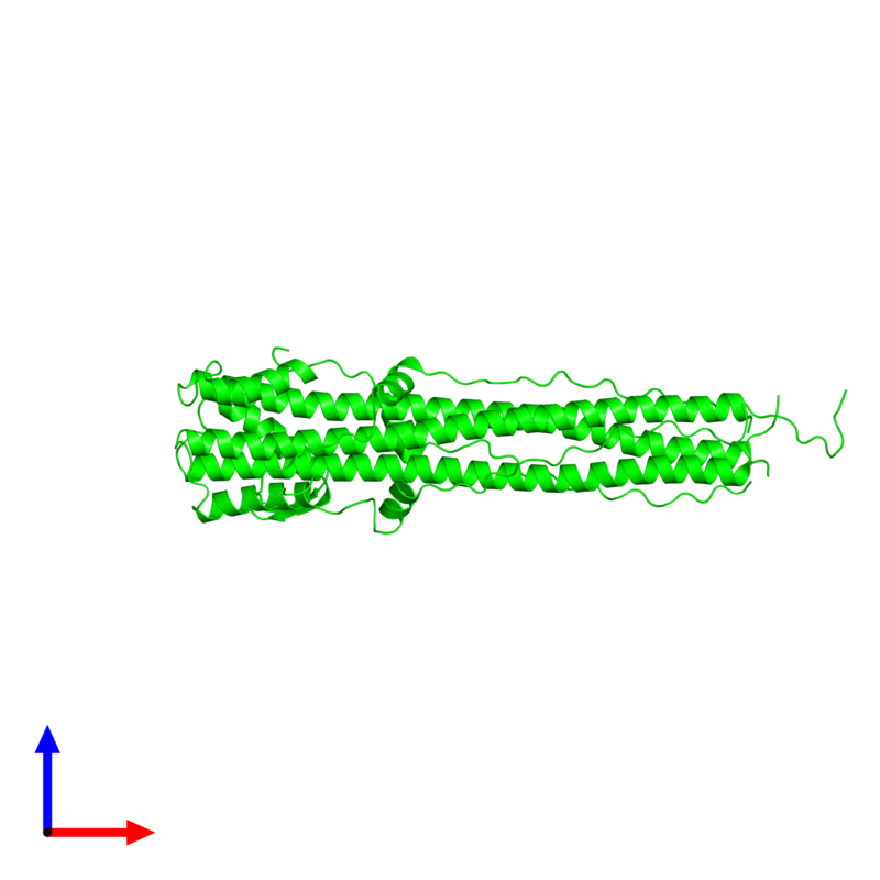 <div class='caption-body'><ul class ='image_legend_ul'> Trimeric assembly 1 of PDB entry 1qu1 coloured by chemically distinct molecules and viewed from the side. This assembly contains:<li class ='image_legend_li'>3 copies of Hemagglutinin HA2 chain</li></ul></div>
