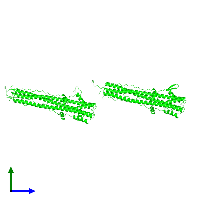 <div class='caption-body'><ul class ='image_legend_ul'>The deposited structure of PDB entry 1qu1 coloured by chemically distinct molecules and viewed from the front. The entry contains: <li class ='image_legend_li'>6 copies of Hemagglutinin HA2 chain</li><li class ='image_legend_li'>There are no non-polymeric molecules</li></ul></li></ul></li></div>