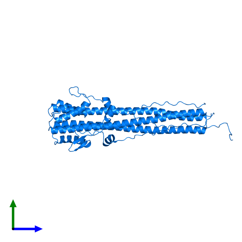 <div class='caption-body'>PDB entry 1qu1 contains 3 copies of Hemagglutinin HA2 chain in assembly 1. This protein is highlighted and viewed from the front.</div>