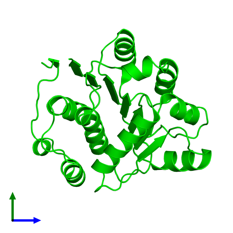 <div class='caption-body'><ul class ='image_legend_ul'> Monomeric assembly 1 of PDB entry 1qva coloured by chemically distinct molecules and viewed from the front. This assembly contains:<li class ='image_legend_li'>One copy of ATP-dependent RNA helicase eIF4A</li></ul></div>