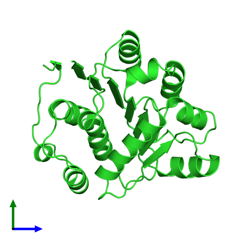 <div class='caption-body'><ul class ='image_legend_ul'>The deposited structure of PDB entry 1qva coloured by chain and viewed from the front. The entry contains: <li class ='image_legend_li'>1 copy of ATP-dependent RNA helicase eIF4A</li><li class ='image_legend_li'>There are no non-polymeric molecules</li></ul></li></ul></li></div>
