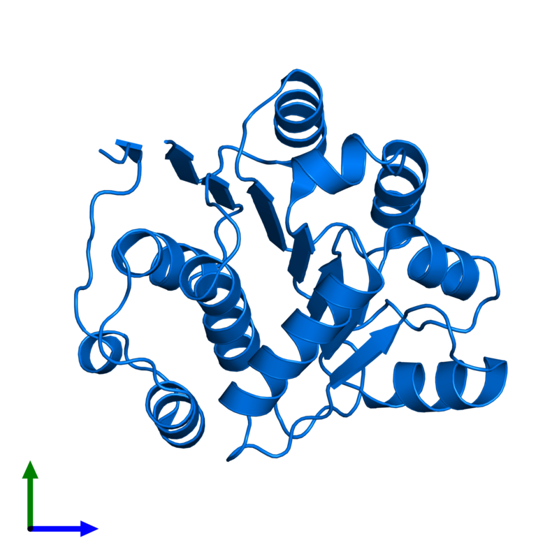 <div class='caption-body'>PDB entry 1qva contains 1 copy of ATP-dependent RNA helicase eIF4A in assembly 1. This protein is highlighted and viewed from the front.</div>