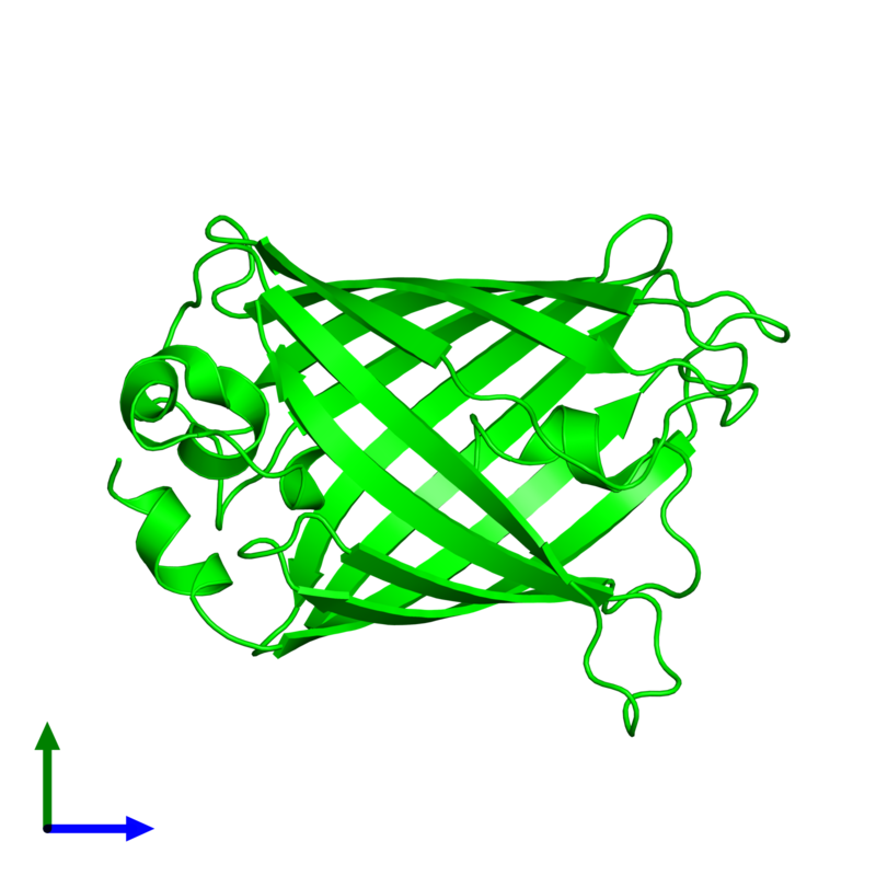 <div class='caption-body'><ul class ='image_legend_ul'> Monomeric assembly 1 of PDB entry 1qyq coloured by chemically distinct molecules and viewed from the front. This assembly contains:<li class ='image_legend_li'>One copy of Green fluorescent protein</li></ul></div>