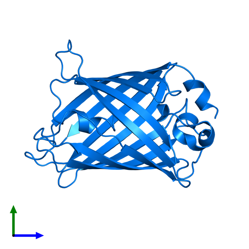 <div class='caption-body'>PDB entry 1qyq contains 1 copy of Green fluorescent protein in assembly 1. This protein is highlighted and viewed from the front.</div>