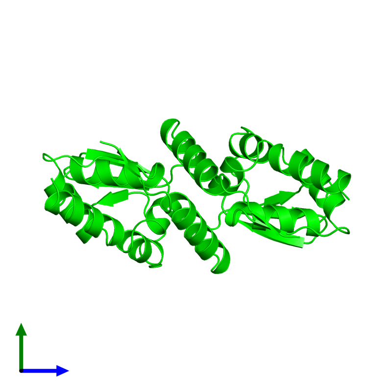 <div class='caption-body'><ul class ='image_legend_ul'> Dimeric assembly 1 of PDB entry 1r28 coloured by chemically distinct molecules and viewed from the side. This assembly contains:<li class ='image_legend_li'>2 copies of B-cell lymphoma 6 protein</li></ul></div>