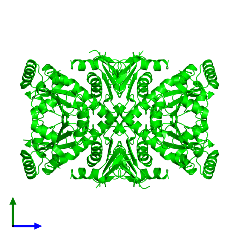 <div class='caption-body'><ul class ='image_legend_ul'> Tetrameric assembly 1 of PDB entry 1r52 coloured by chemically distinct molecules and viewed from the front. This assembly contains:<li class ='image_legend_li'>4 copies of Chorismate synthase</li></ul></div>