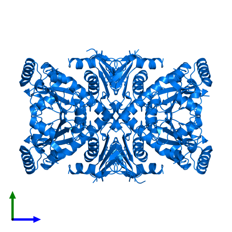 <div class='caption-body'>PDB entry 1r52 contains 4 copies of Chorismate synthase in assembly 1. This protein is highlighted and viewed from the front.</div>