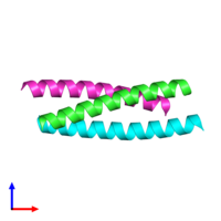 PDB 1rb4 coloured by chain and viewed from the front.